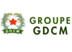 ffe-gdcm